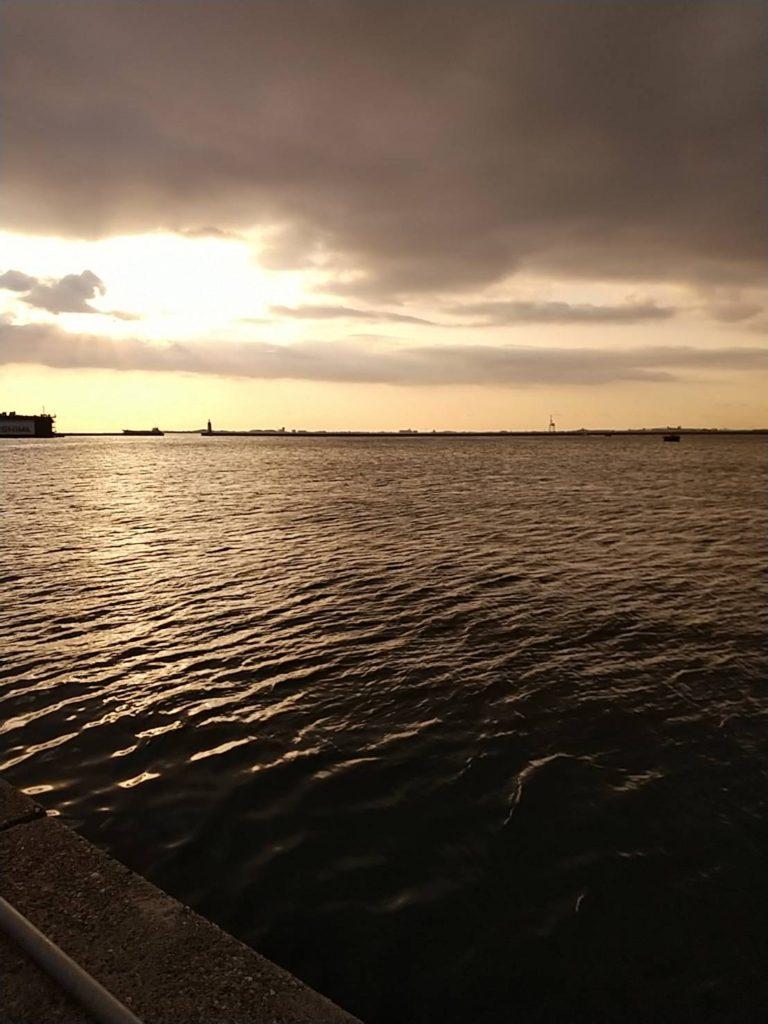 元根井漁港からの早朝の景色